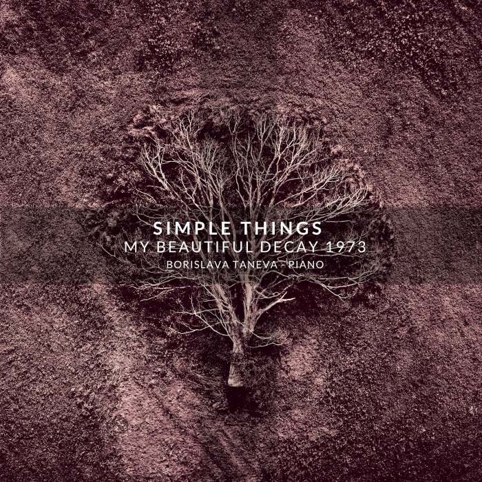 Simple Things cover final